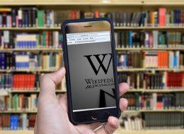 Muzeum wWikipedii, Wikipedia wmuzeum